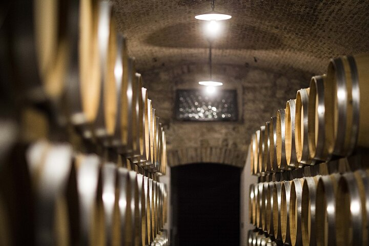 Private Full-Day Amarone Wine Tour with Lunch from Venice