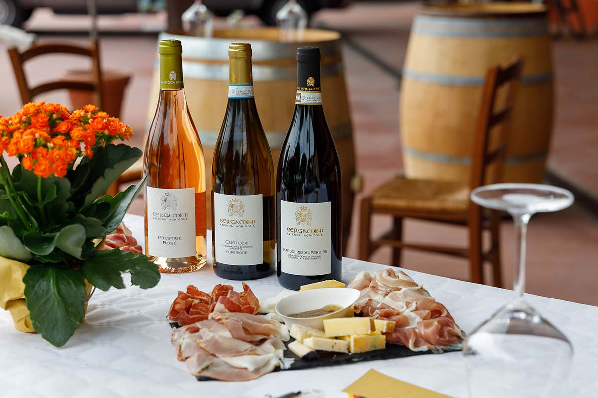 Winery Tour and Tasting of Garda Wines