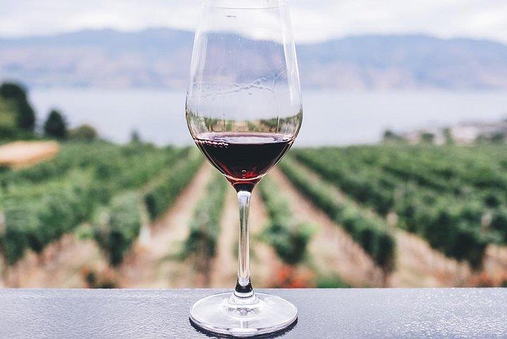 Villena and Winery Private Shore Excursion from Alicante