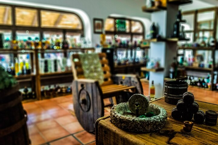 Tequila Tasting in Cabo San Lucas 2