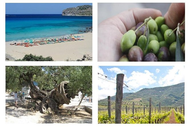 Wine and Olive, Falasarna Beach Coach Tour up 15 persons - Wheelchair Accessible