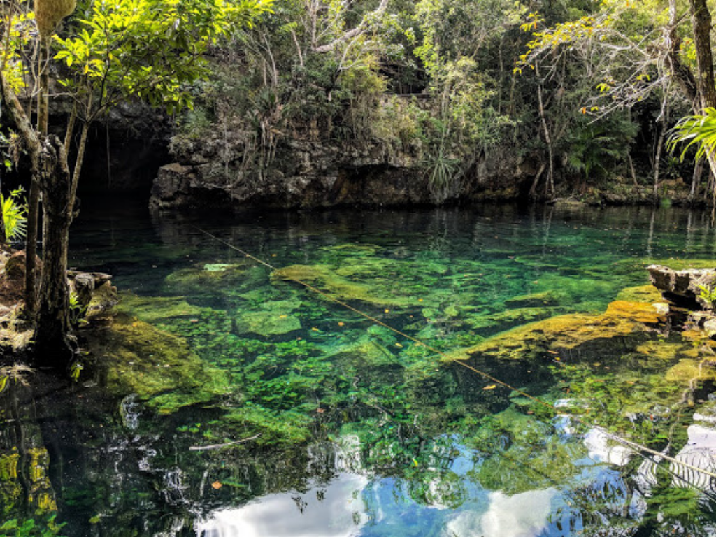 Spend time at the cenote