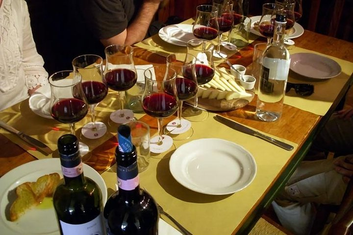 Etna Tour & Lunch in a Winery With Wine Tasting