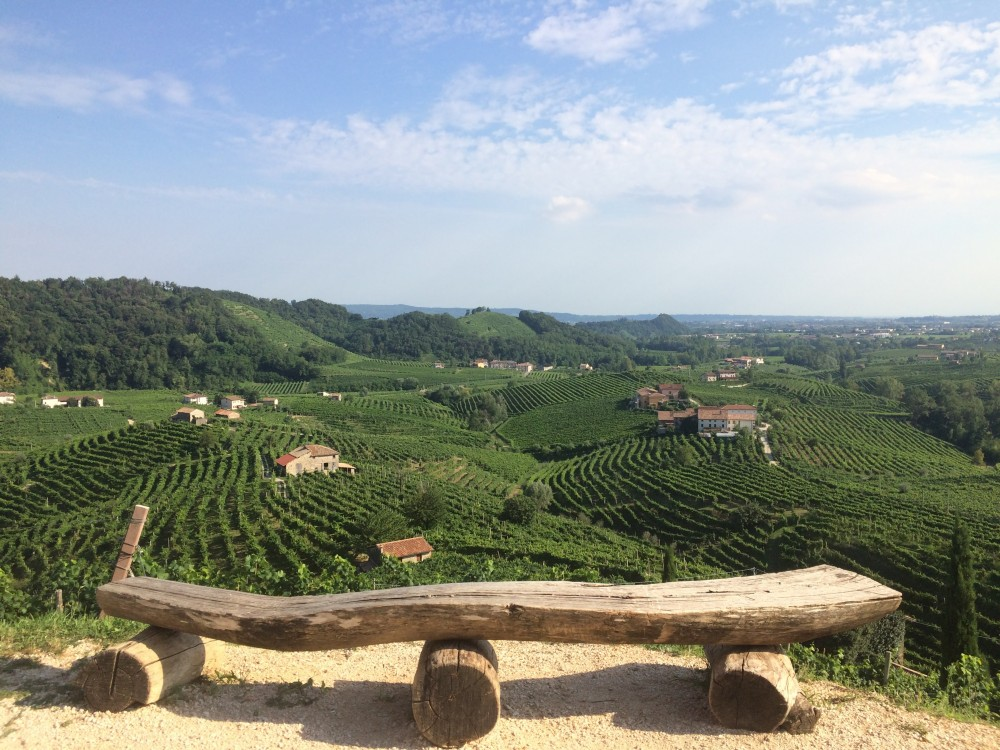 The Prosecco Experience - Guided Tour & tasting in the land of Prosecco Superior