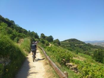 Route on Electric Bike and Wine Tasting