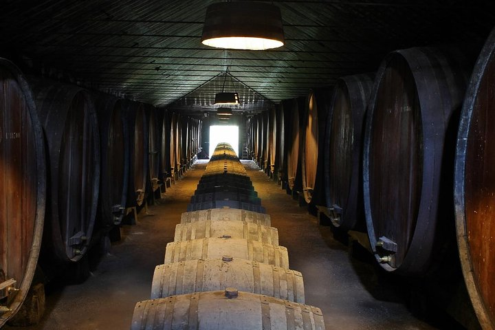Setúbal´s Wine Region Wine Tasting Tour