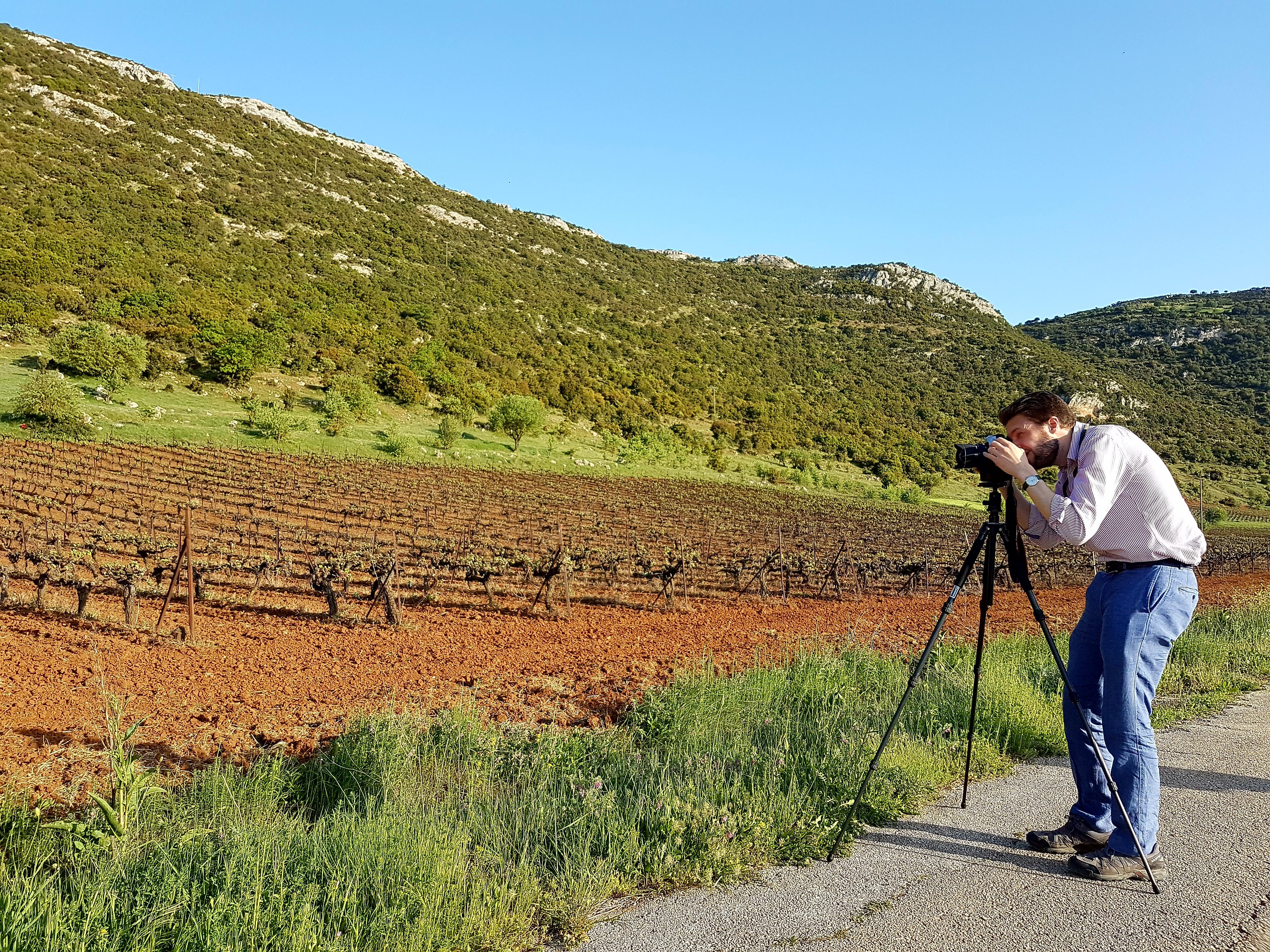Private Nemean Wine Tour, Ancient Nemea & Mycenae from Athens
