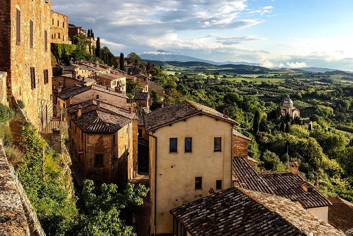 Brunello and Vino Nobile Wine Tour from Florence