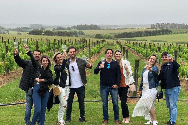 Wine Lovers - Punta del Este Wine Shuttle