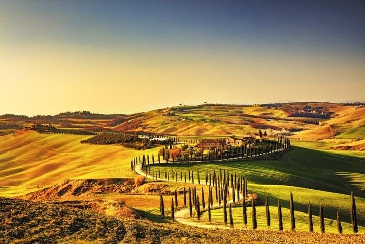 Ramble Through The Rolling Hills Of Chianti + Lunch & 2 Wine Tasting