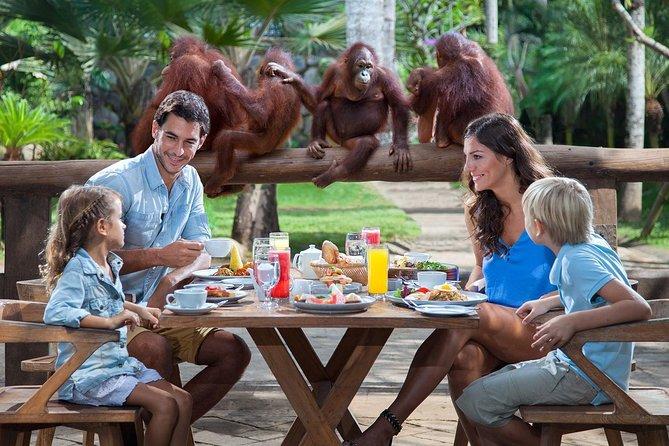 Bali Breakfast with Orang Utan