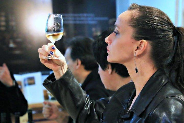 Premium Argentine Wine Tour and Gourmet Tasting