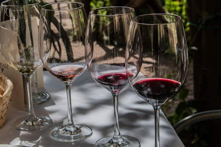 Cooking Class Plus Wine Tasting Experience