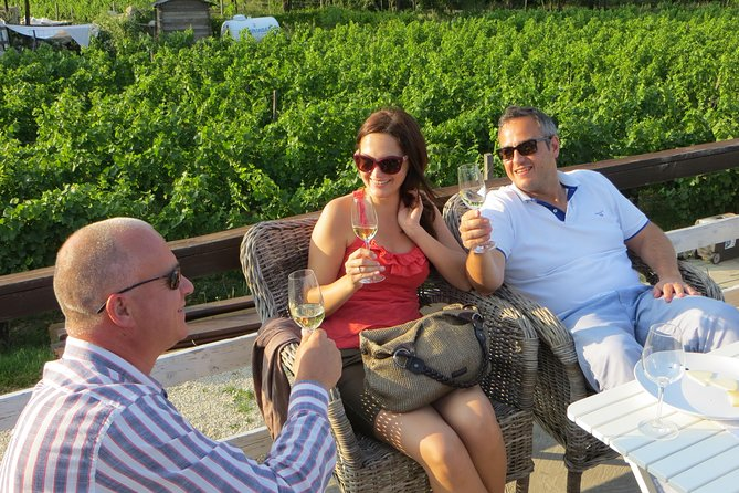 Private Half-Day Wine Tasting Tour in Etyek