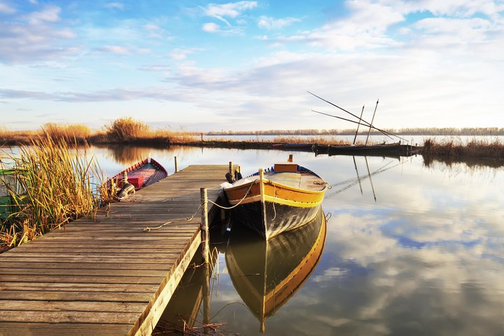 Albufera Day Trip and Paella Experience