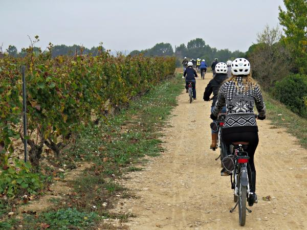 ROUTE IN ELECTRIC BIKE AND LUNCH IN WINERY
