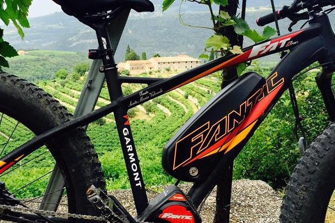 E-bike tour with Amarone Tasting