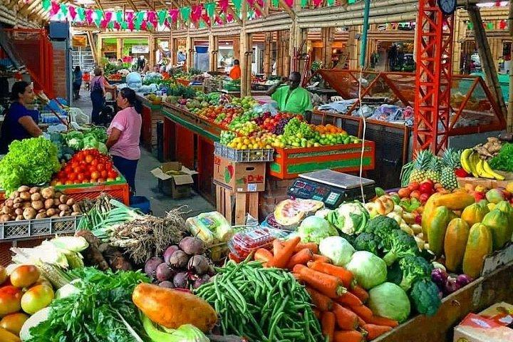 Alameda Market Fruit Tour