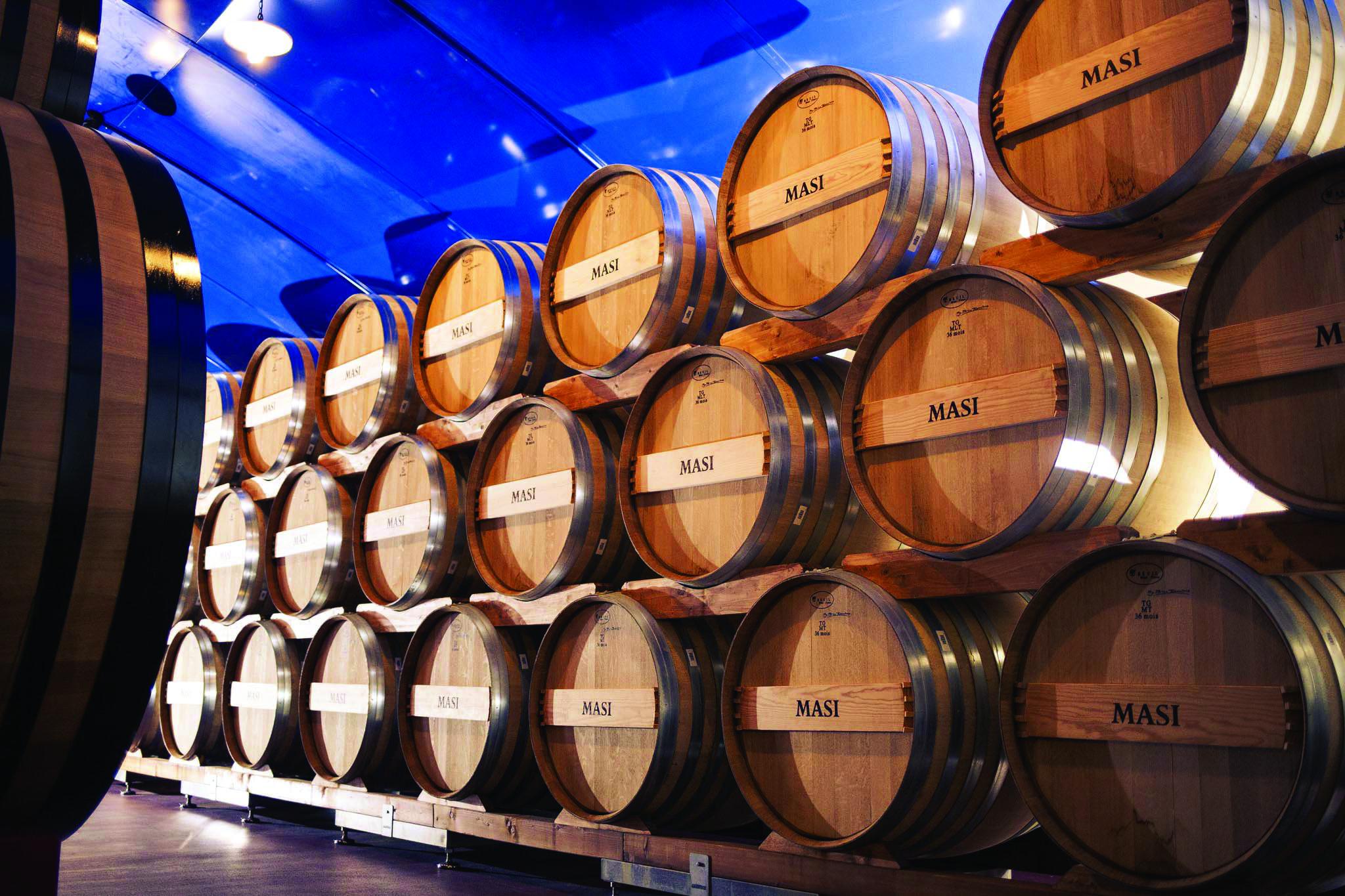 Verona area: Wine Tasting Experience in Valpolicella