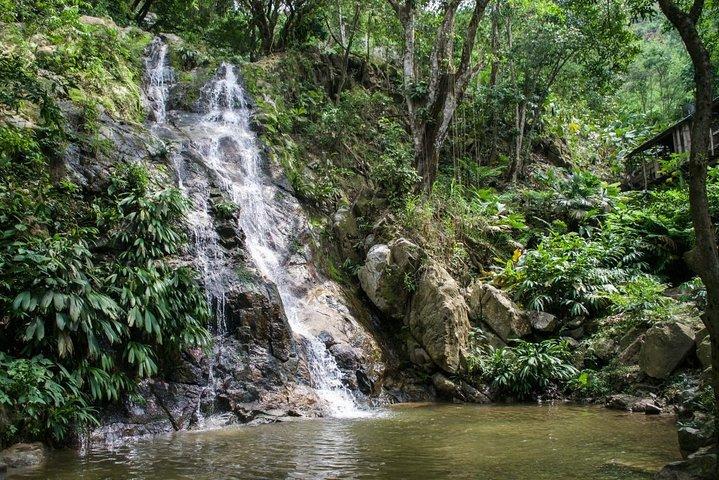 Minca + Marinka Waterfalls + Coffee Farm La Victoria Tour 7H