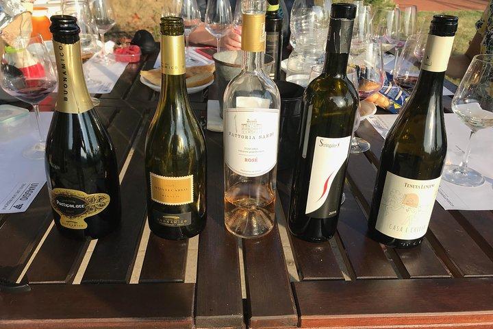 Wine tasting in Lucca