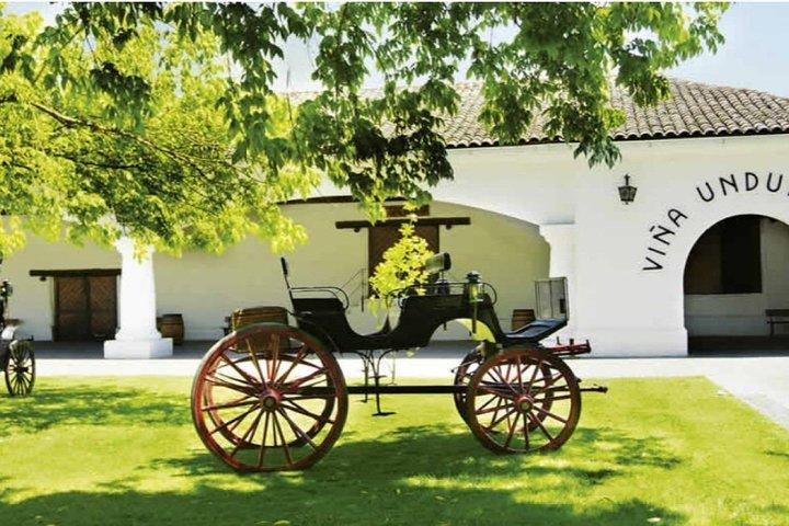 Half Day Trip to Undurraga Vineyard from Santiago - Wine Tasting Included