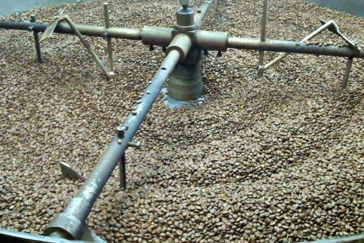 Coffee Farm Hacienda La Coloma Day Trip + Optional Lunch