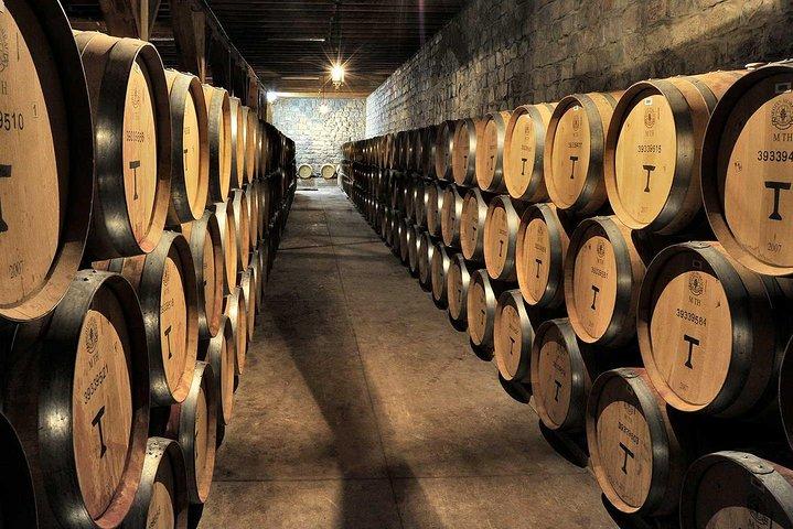 Private Tour: Santa Rita Vineyard with Wine Tastings