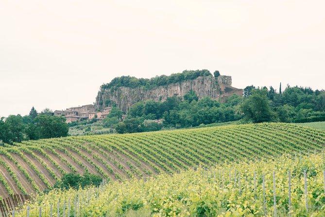 Orvieto Wine Tasting