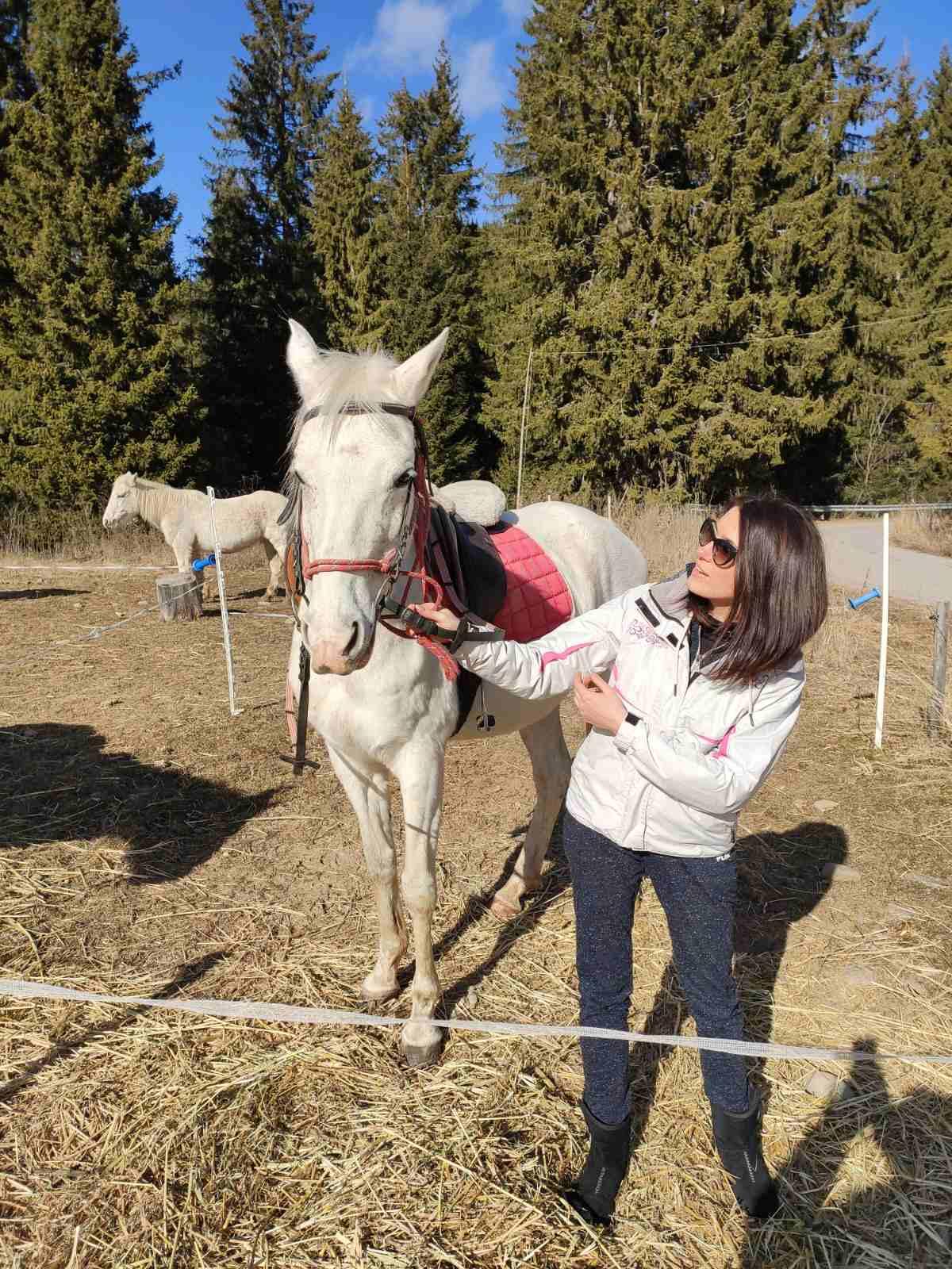 Enjoy horse riding