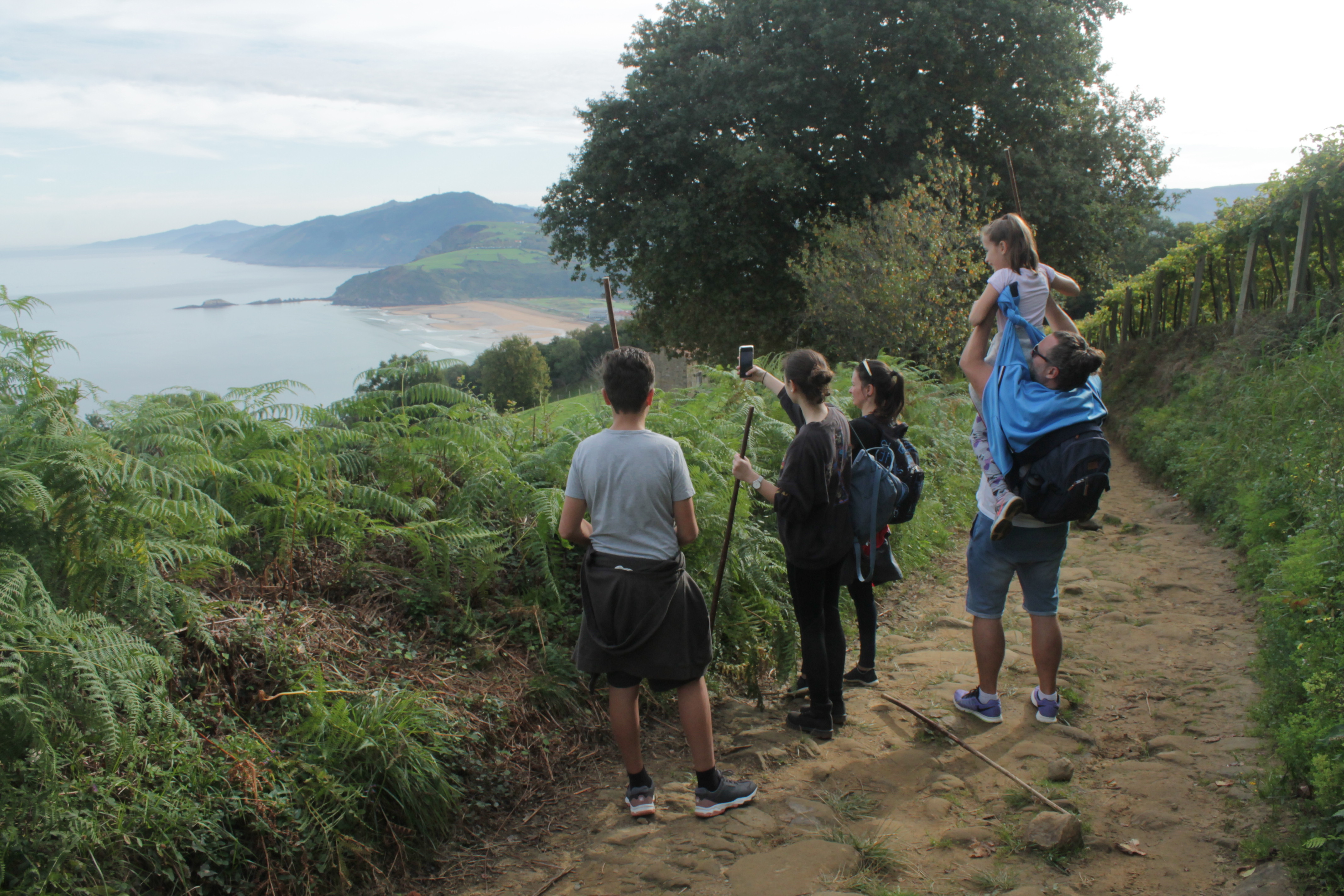 Hiking the Way of Saint James and Winery Visit