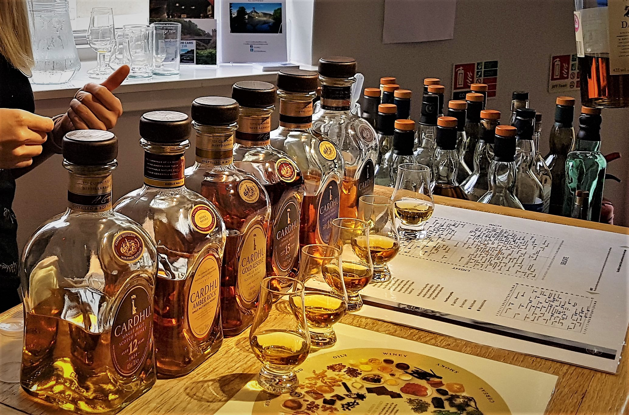 Full Day Whisky Tasting with fantastic views and monuments in English