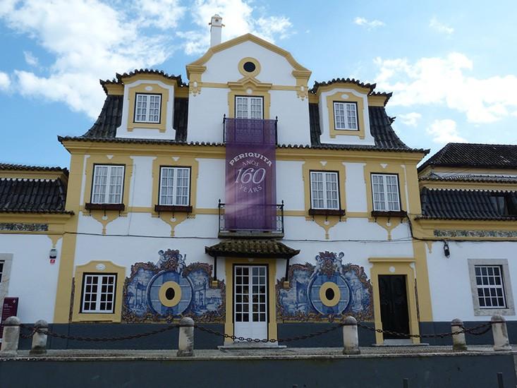 Wine & Food Tour of Setubal-Azeitao from Lisbon