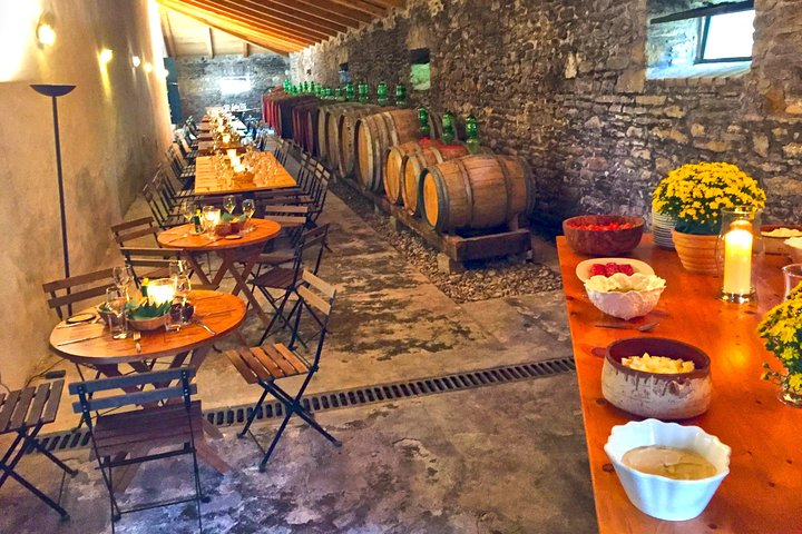Winery tour with Wine and Olive tasting at Theotoky Estate in Corfu