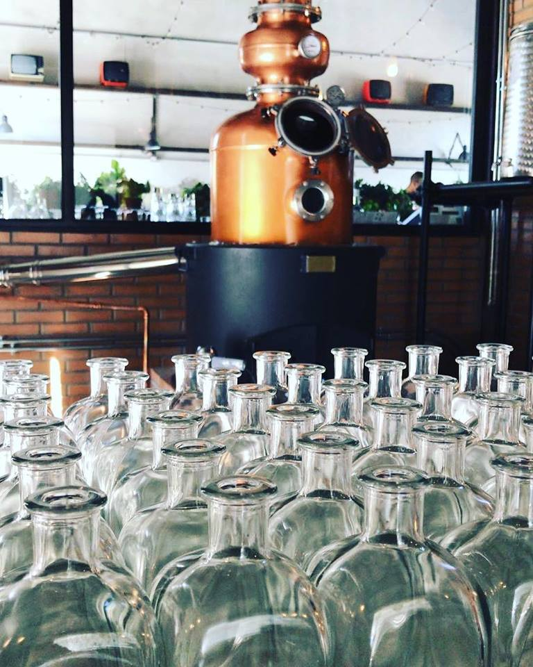 Gin tasting experience in Umbria