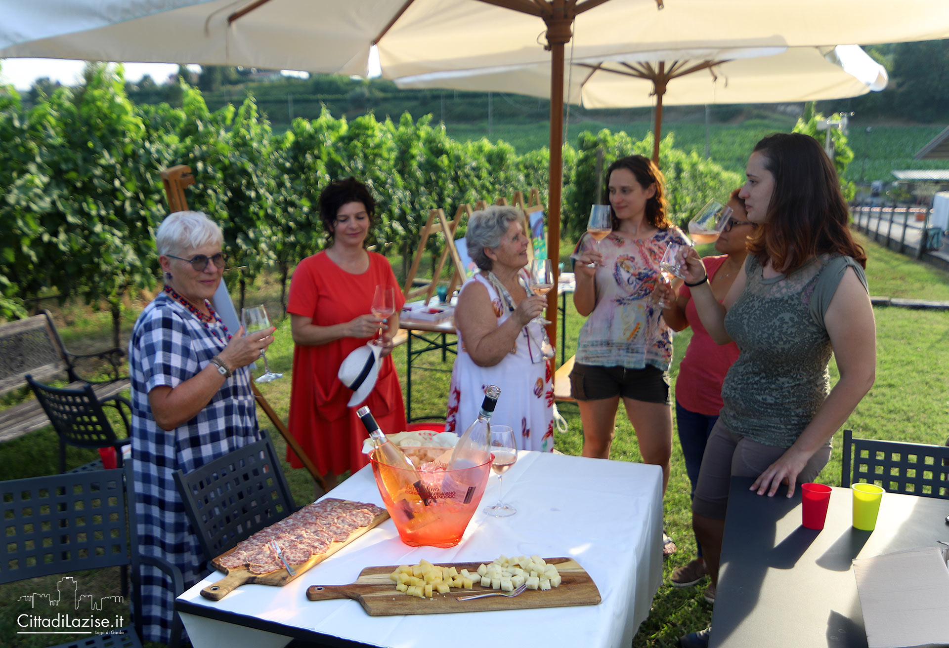 Wine and food tasting in the vineyards