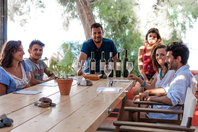 Santorini: Sample Island Wines on a Private Winery Tour