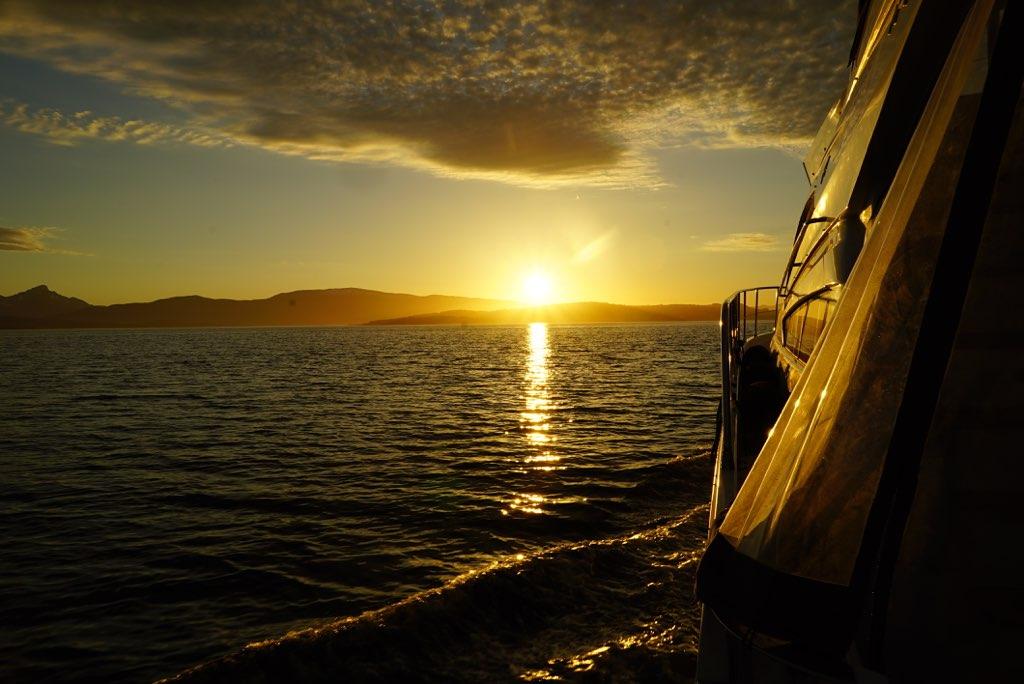 Cherish a midnight sun