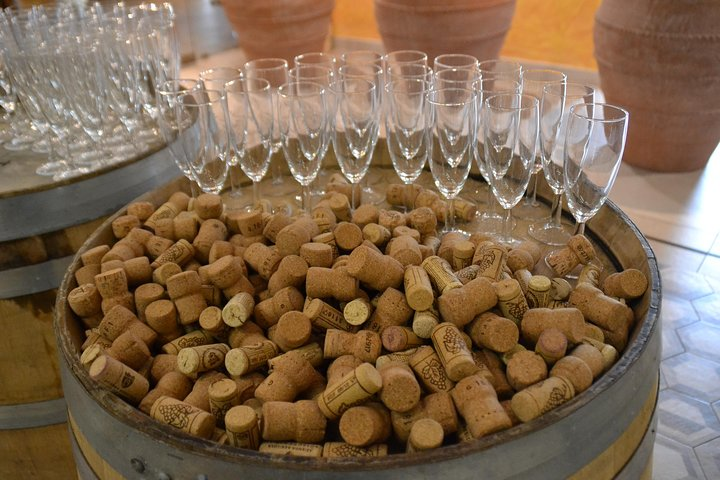 Wine Tour Experience for Family or Friends