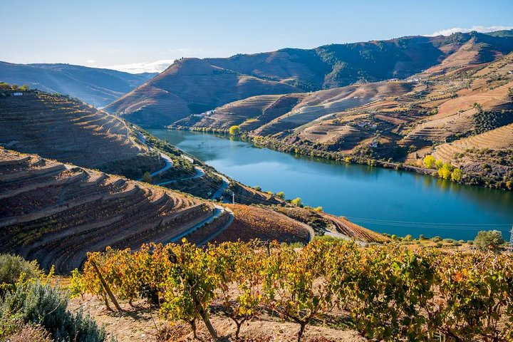 Douro Valley: private tour with lunch and wine estate all inclusive