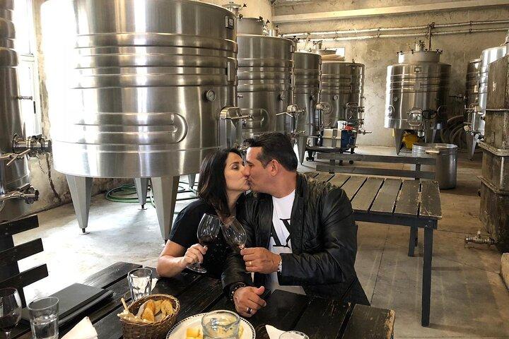 Wine Lovers - Montevideo 1st Wine Shuttle