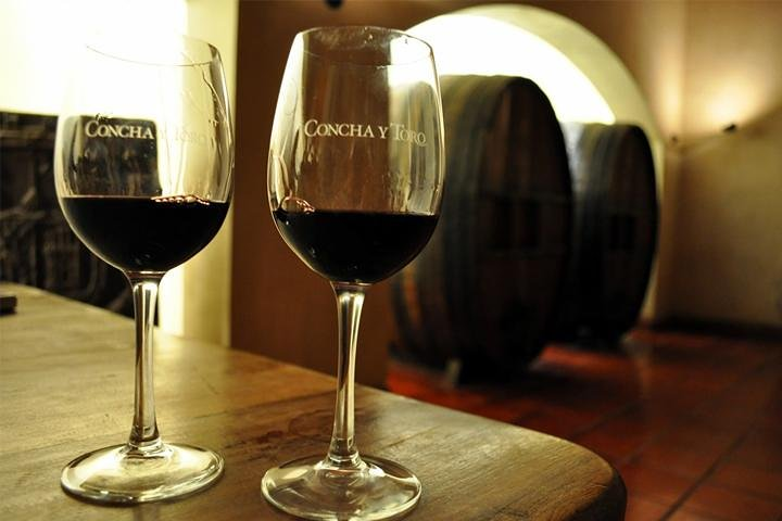 Premium Concha y Toro Winery Tour with Wine and Cheese Tastings from Santiago