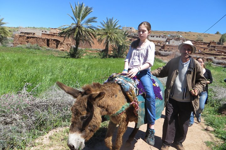 Ride a donkey with Berbers