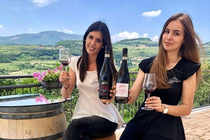 Amarone Wine Tasting from Bologna by Rail