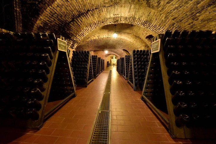 Private wine day tour from Milan with 3 wineries included