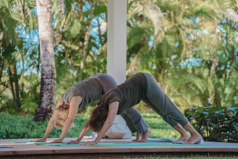 Enjoy yoga in natural surroundings