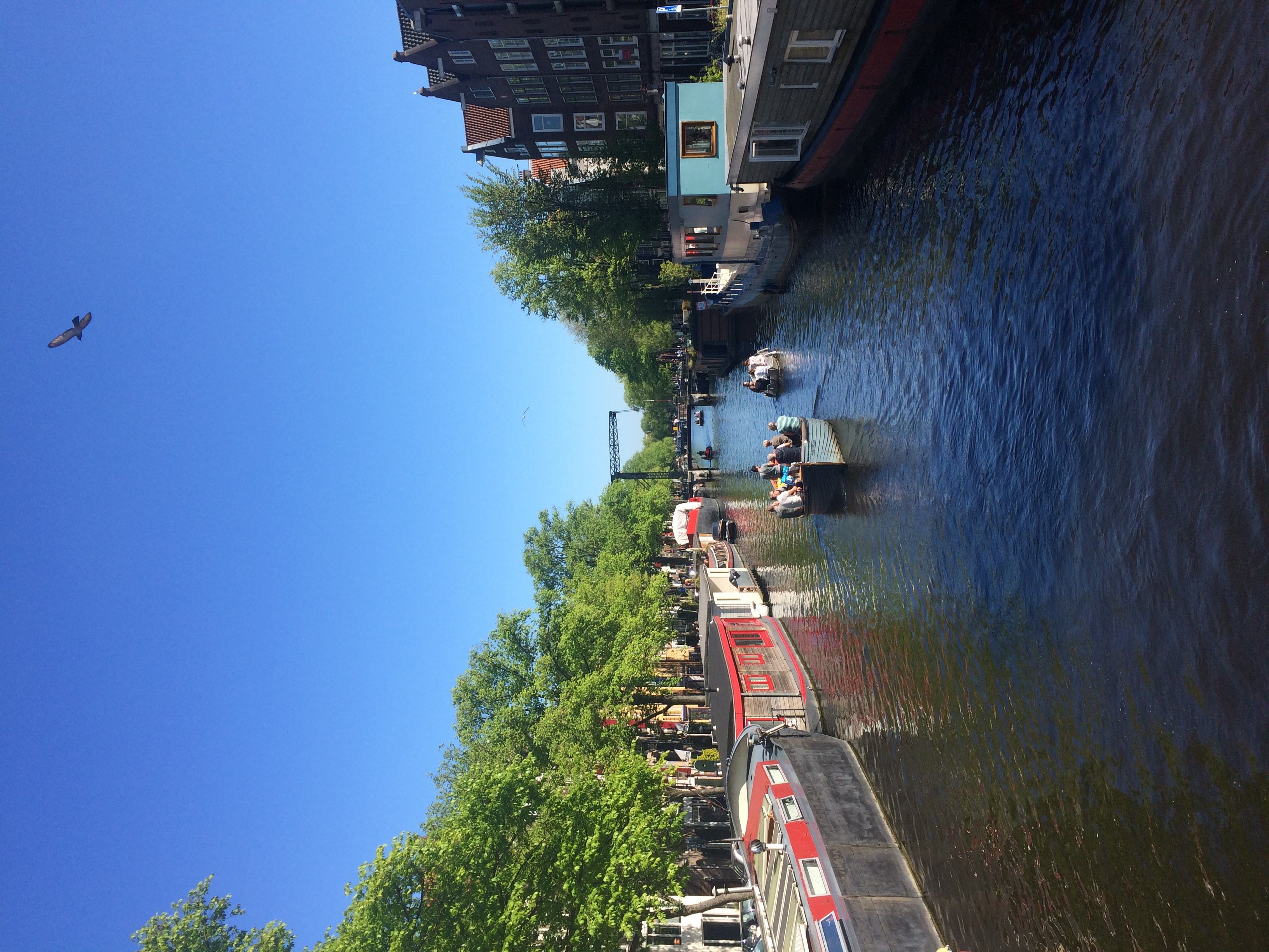 Best Culinary Amsterdam Private Tour