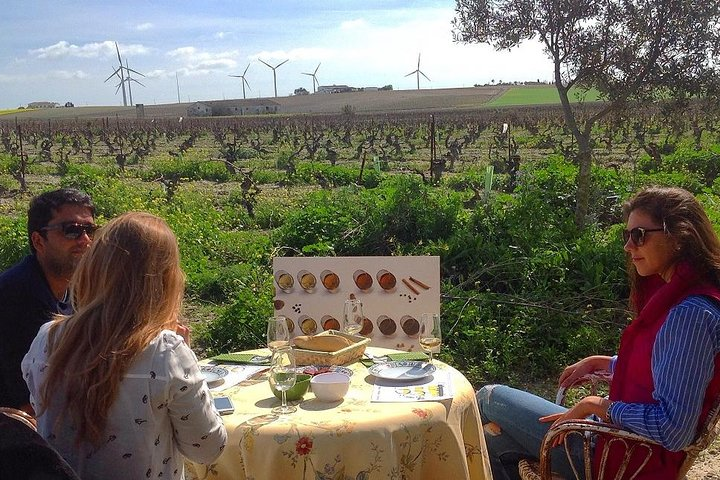 Full Day Sherry Wine Private Experience from Cádiz
