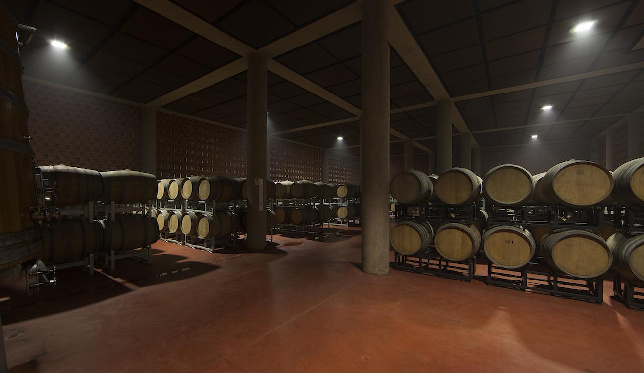 Bolgheri wine tasting experience at Caccia al Piano