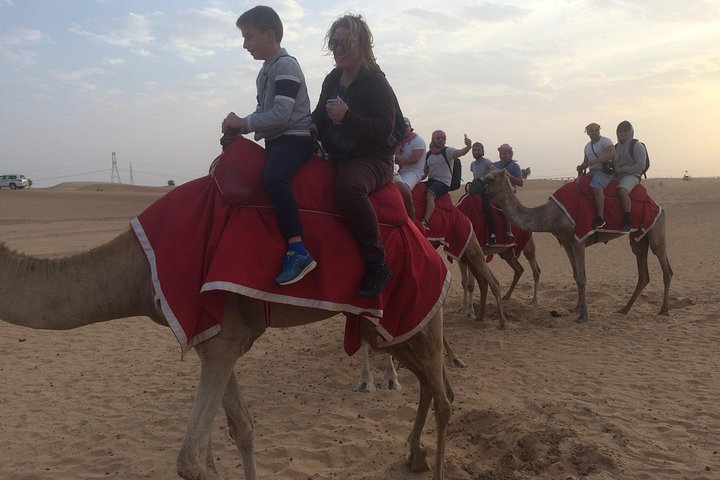Dubai Evening Camel Safari Adventure with BBQ Dinner